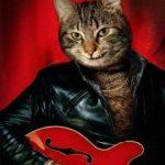 guitarcat