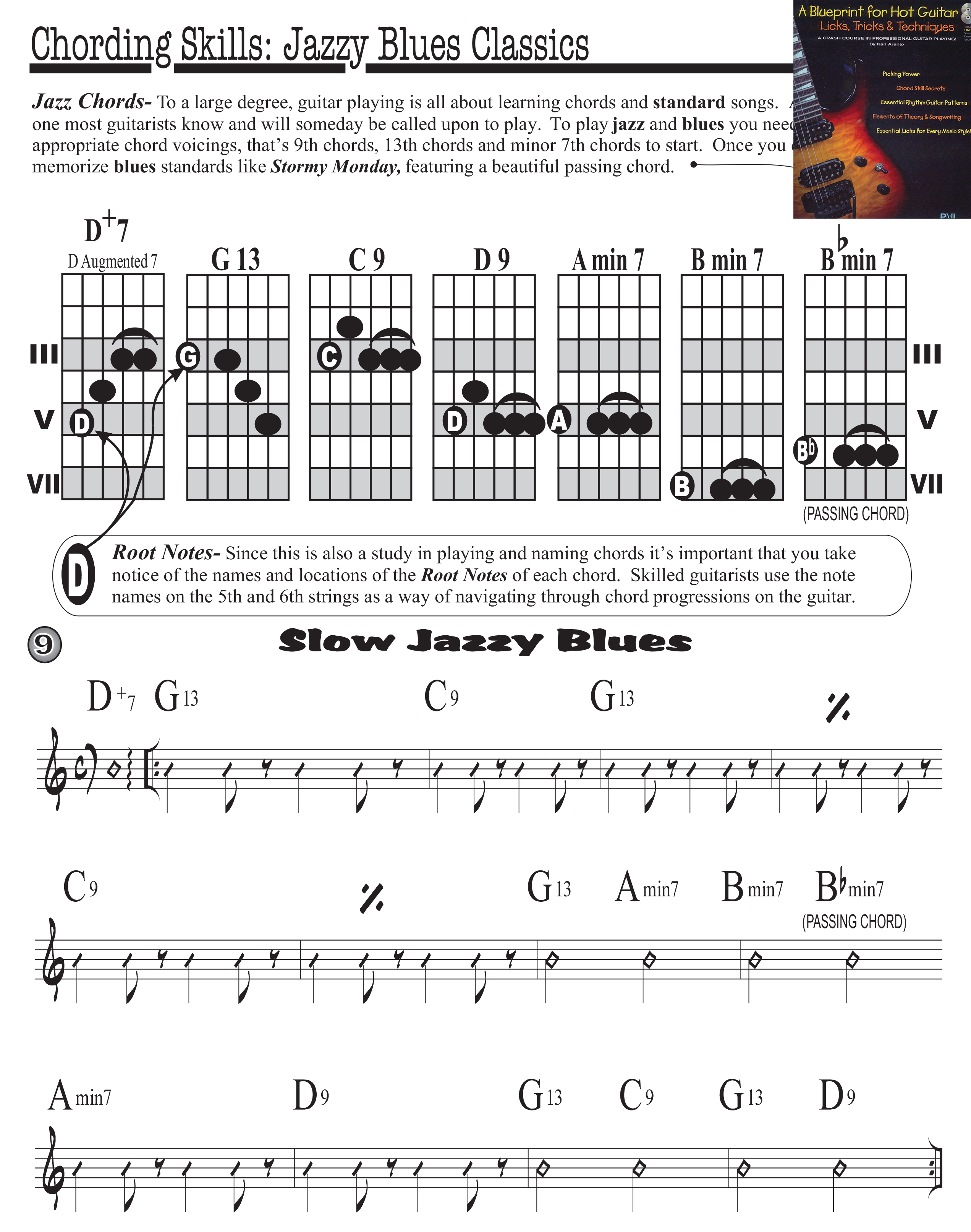 Learn Guitar Karl Aranjo
